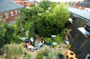 Ein Quartier-Esswald auf einem Dach in Reading, UK